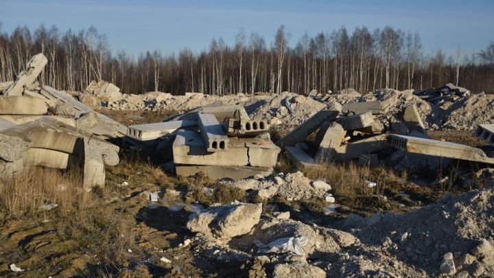 Целое кладбище бетонных плит устроили под Ярославлем