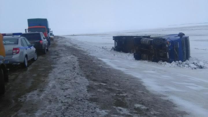 На трассе в Самарской области перевернулся прицеп с лошадьми