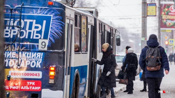 Могут поднять до 31: как подорожает общественный транспорт Ярославля этой весной