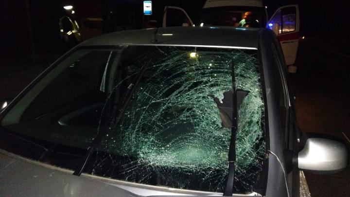 «Выскочил на темную дорогу»: под Волгоградом на федеральной трассе задавили молодого мужчину