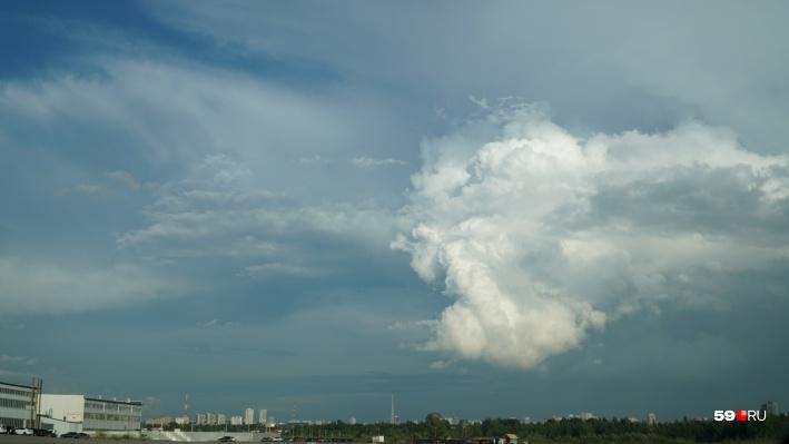 Потепление и дожди: публикуем прогноз погоды в Прикамье на неделю