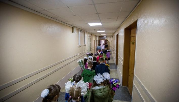 Дежурили онлайн: новосибирцы записали первоклашек на «Госуслугах» — самые настойчивые пришли в школы к 6 утра