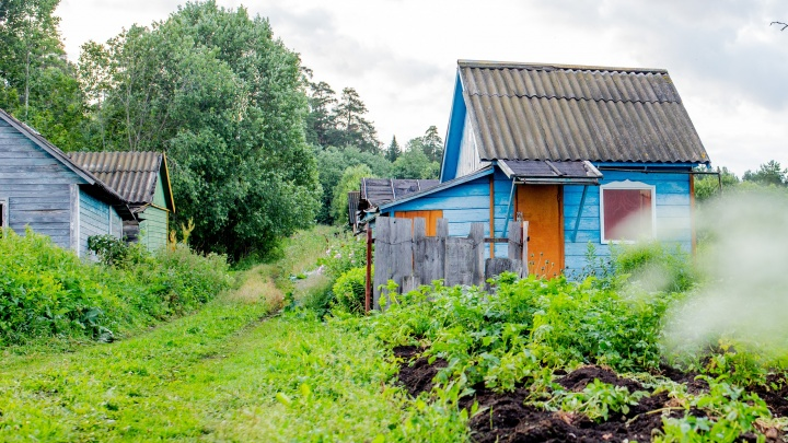 В Ярославской области в сарае обнаружили тело 11-летней девочки