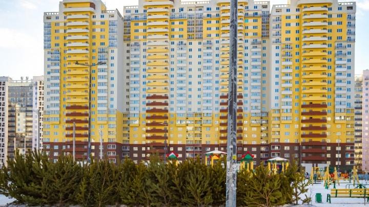 Предпринимателей, устроивших ёлочные свалки в Челябинске, внесут в чёрный список