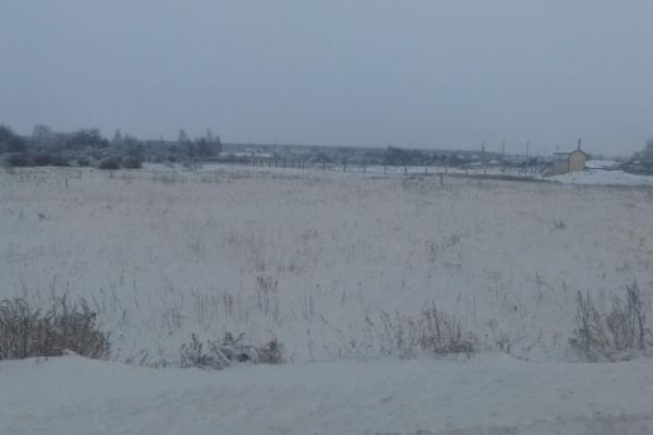 В причинах, почему снег в посёлке Введенское становился жёлто-серым, разбирается природоохранная прокуратура