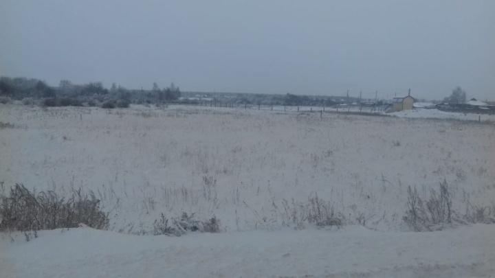 Природоохранная прокуратура проверяет информацию о загрязнении в посёлке Введенское
