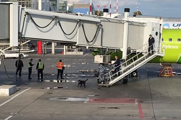 Силовики проверили самолёт, следующий в Новосибирск