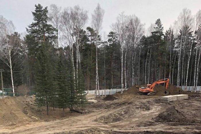 Участок возле лицея № 130 уже приготовили под строительство — осталось только пересадить 5 мемориальных кедров