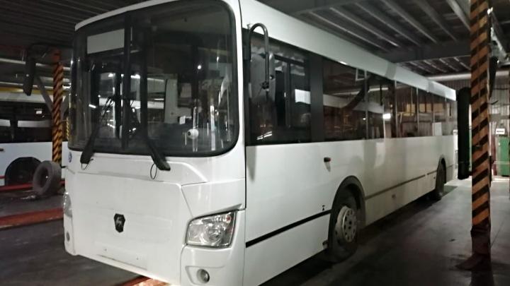 Новые автобусы выйдут на два городских маршрута