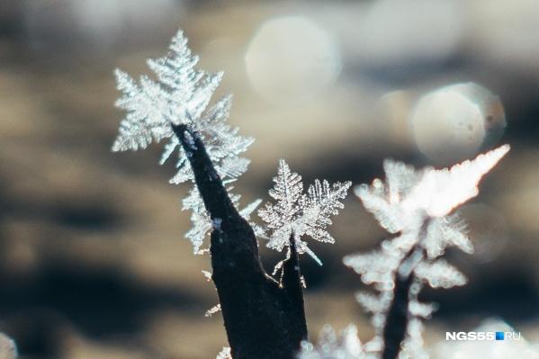 Выходные обещают быть снежными