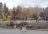 В Екатеринбурге общественники обвинили мэрию в «варварском» благоустройстве из-за обрезки деревьев