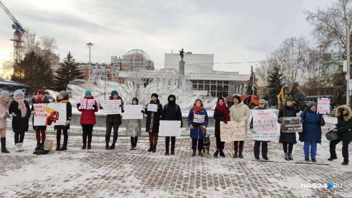 Девушки вышли в центр Красноярска на пикет против домашнего насилия