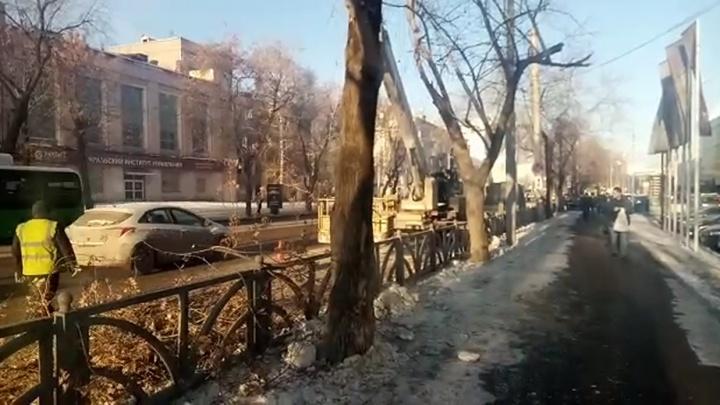 Праздник кончился: возле «Саммита» обрезали украшенные к Новому году деревья