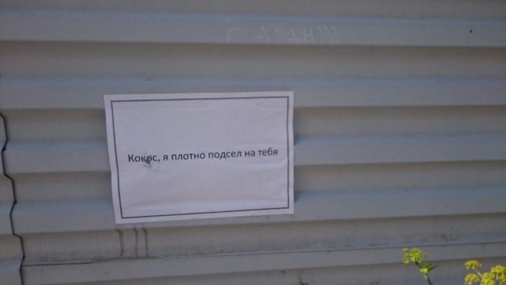 «Кокос, я подсел на тебя»: новосибирец расклеил по городу признания в любви бросившей его девушке