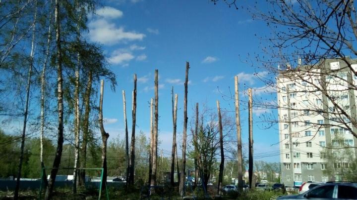Затулинский Стоунхендж: новосибирцы возмутились высокими столбами вместо деревьев у себя во дворе