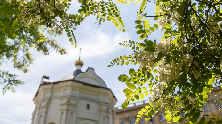 В Волгоградскую область придёт ясная погода до +25 ºС