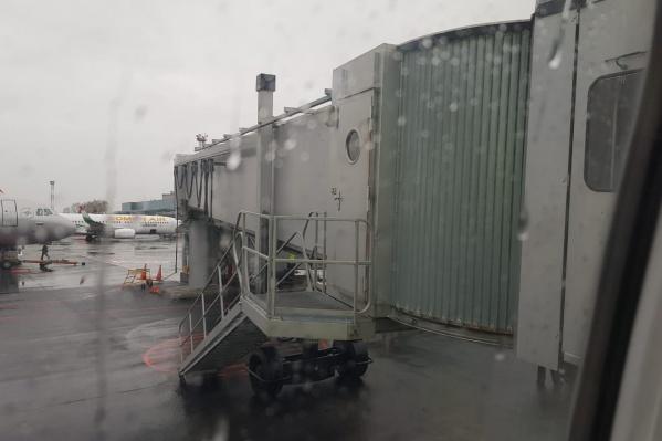 Сначала пассажиры рейса не выходили из самолёта и ездили по территории Толмачёво. После третьей неудачной попытки взлететь их отправили в санитарную зону аэропорта