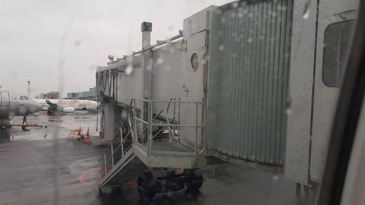 Авиакомпания S7 объяснила, почему самолет на рейсе Новосибирск — Краснодар трижды не мог взлететь