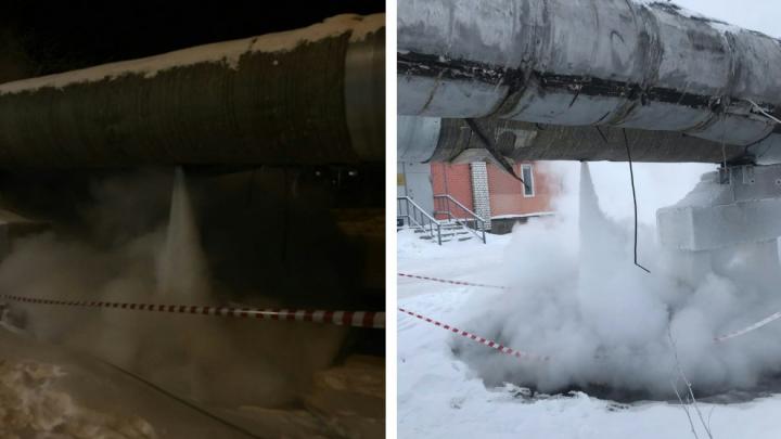 Во время морозов в Архангельске прорвало трубу с горячей водой