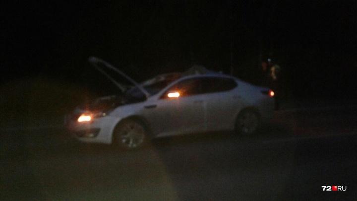 В столкновении иномарки с лосем на трассе Тюмень — Омск пострадала пассажирка
