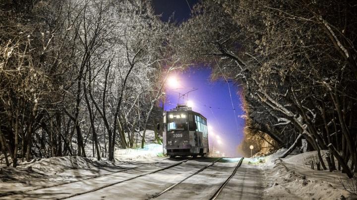 Трамвай до Снежиной и электробусы: в мэрии представили планы развития общественного транспорта