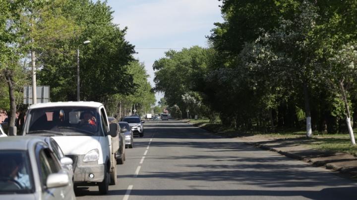 «Вырубать деревья цели нет»: мэр Челябинска прояснил перспективы строительства дороги на Дарвина