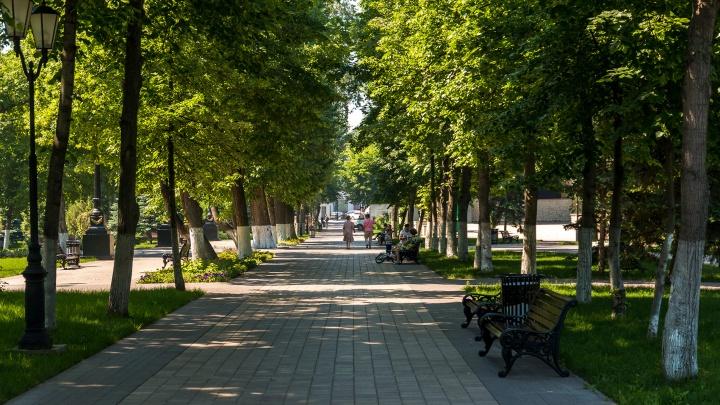 «По недомыслию»: Азаров объяснил отмену строительства нового Драмтеатра в Струковском саду