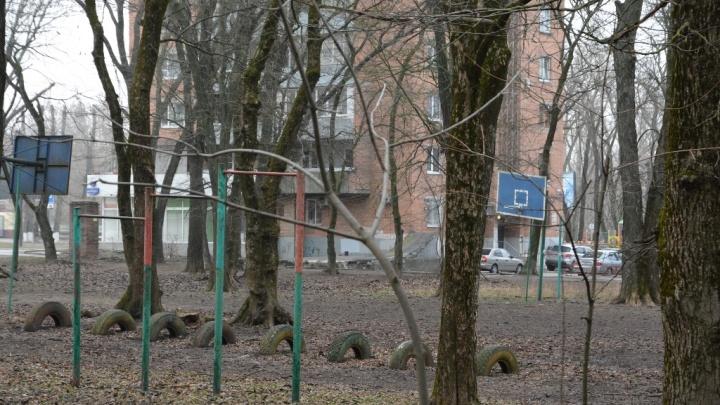 В Ростове из рощи на проспекте Шолохова сделают парк