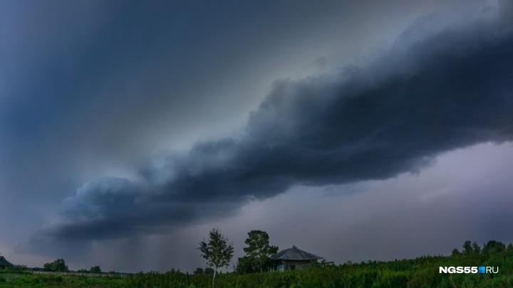 Спасатели предупреждают омичей о дожде и резком усилении ветра