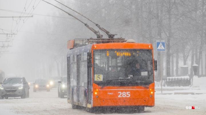 В новогоднюю ночь общественный транспорт в Перми будет ходить без перерывов