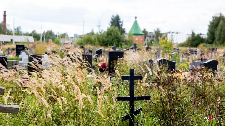 Хоронить больше негде: в Ярославле построят новое кладбище