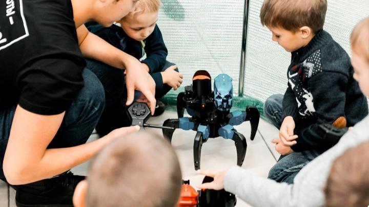 Задать вопрос андроиду и увидеть бой молний: в Ярославль едет фестиваль роботов