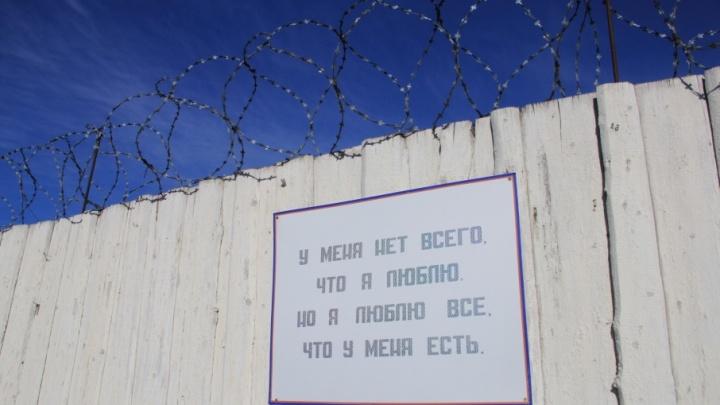 В Архангельске возбудили три уголовных дела после избиения девушки экс-осужденным