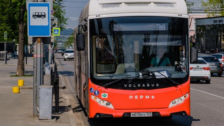 В Перми из-за ремонта на улице Луначарского автобусы на два дня изменят маршруты