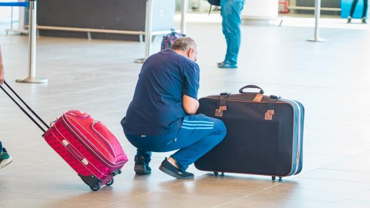 Из Ростова в Волгодонск — на самолете: на Дону могут возродить региональную авиацию