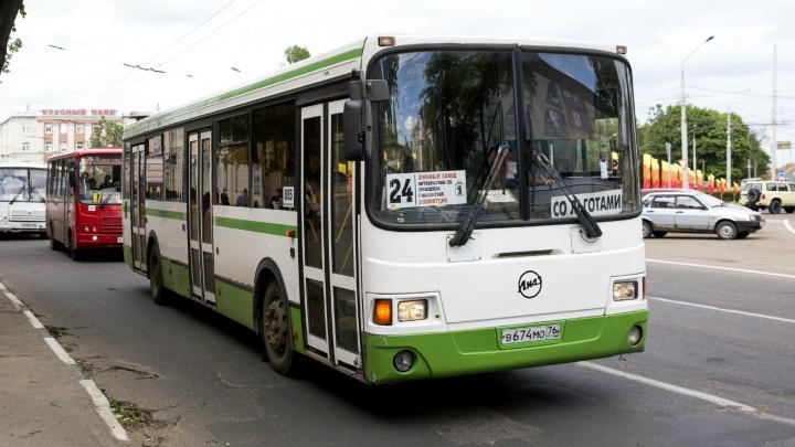 Ярославль может остаться без маршруток: в городе началась крупная реформа пассажирского транспорта