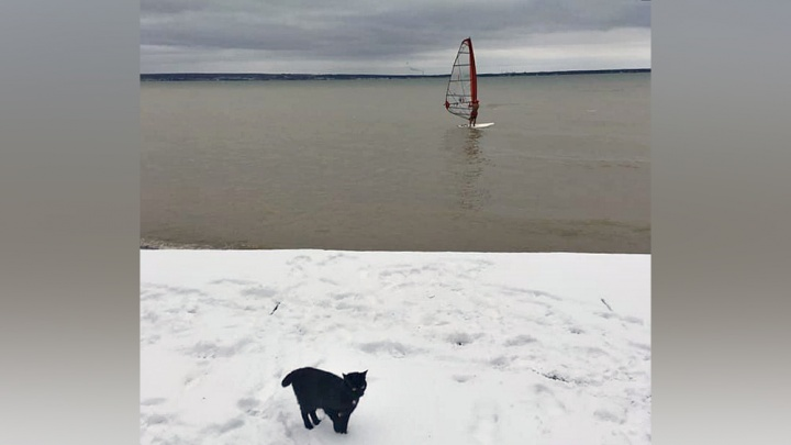 «Падать было нельзя»: новосибирец устроил заезд по ледяному Обскому морю на доске под парусом