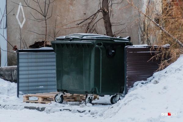 Считается, что пермяки выкидывают по 224 килограмма мусора в год