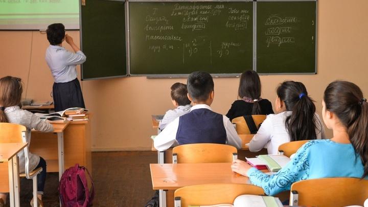 Российские школы научат детей защищаться от троллинга и травли в интернете