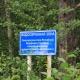 Северодвинский суд отказал мэру города в иске против защитников Рикасихи от мусорного полигона