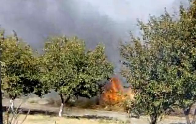 Огненный август: в Ростове в районе Змиевской балки вспыхнул ландшафтный пожар