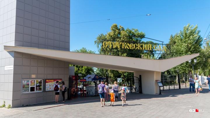Идею строительства нового драмтеатра в Струковском саду официально отклонили