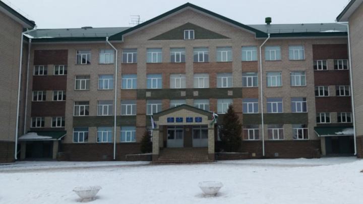 150 рублей за вход: в уфимской школе новогоднюю елку сделали платной