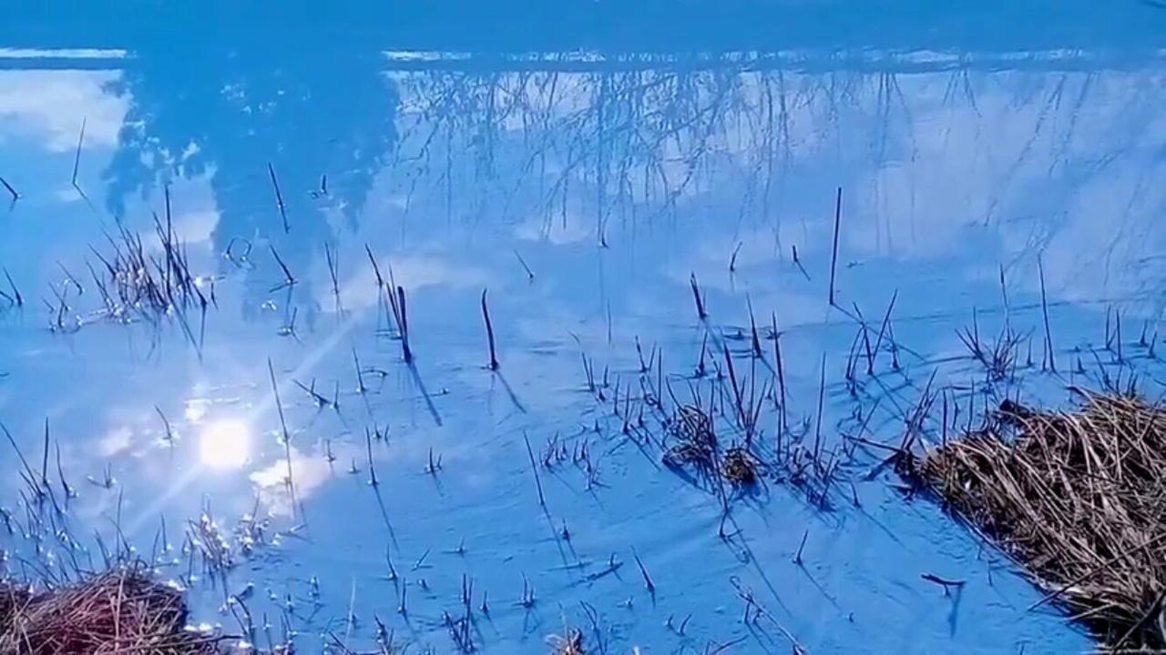 Кажется, что вода стала очень густой