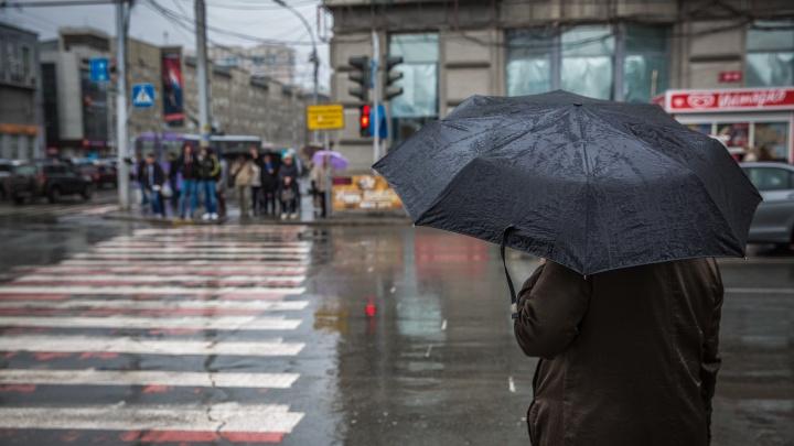 К Новосибирской области подходят дожди и мокрый снег