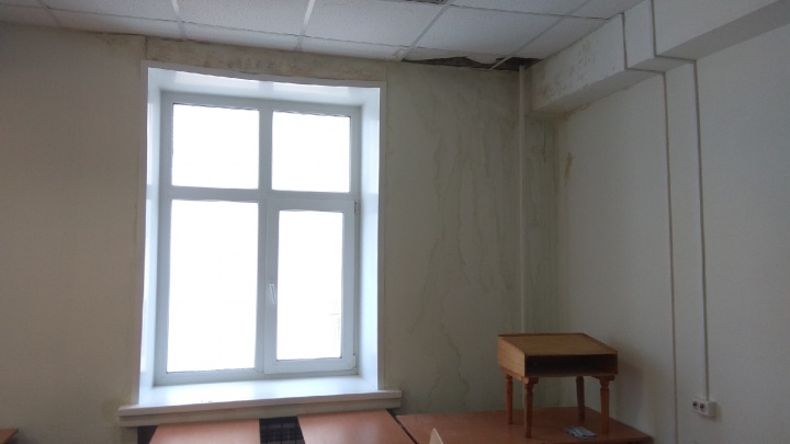 В САФУ прокомментировали протекающие потолки в корпусе на Ломоносова