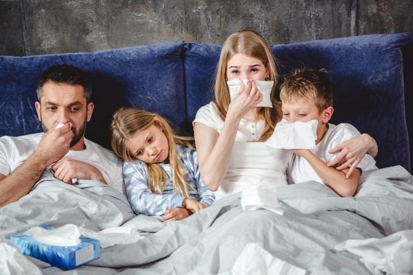 Бризер позволяет забыть о простуде и дискомфорте из-за сухого воздуха