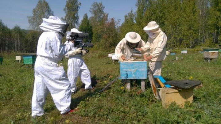 Французы снимают фильм в башкирском заповеднике