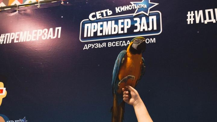 Екатеринбургский кинотеатр отбился от требования платитьамериканским композиторам