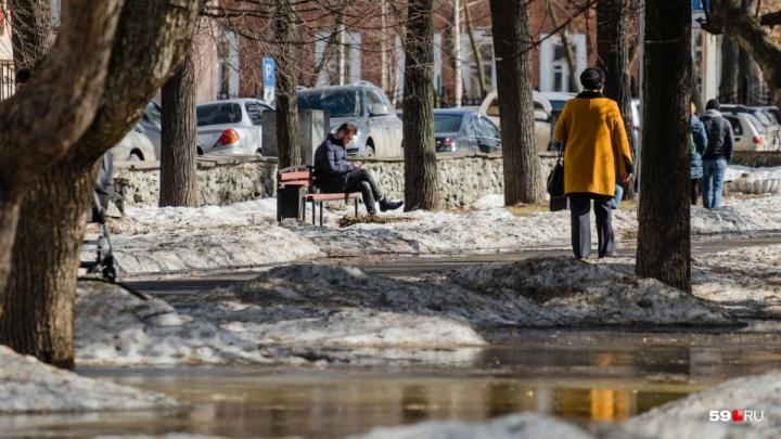В Прикамье ожидается мокрый снег с дождем, ветер и гололедица